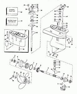 15 Hp Evinrude Parts Diagram