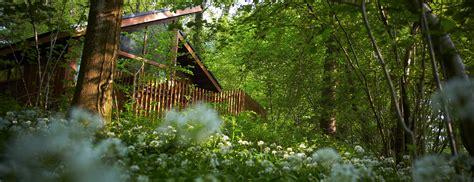 Forest Of Dean Log Cabin & Lodge Holidays & Breaks