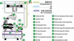 Ts Series - Screw Air Compressor