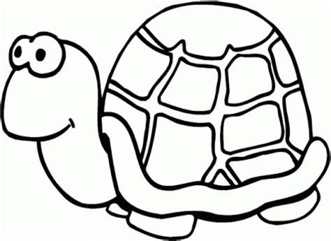 simple turtle coloring pages  print  preschoolers cdsxi