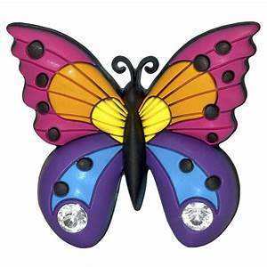 Butterfly Pictures For Kids