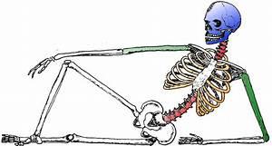 39 Anavar Cycle Resultaten die Fat Los, Boost Kracht
