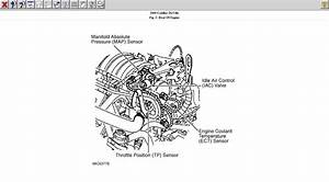 Cadillac  How Do You Take Off A Motor Mount On A 1998