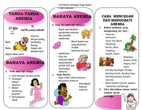 Www Wanita Hamil Tua Leaflet Anemia Akper Pemda Raha 2