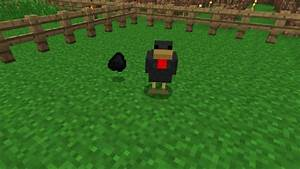 Mo' Chickens   Minecraft Mods