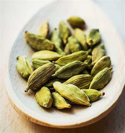 comment utiliser la ricotta en cuisine comment utiliser la cardamome en cuisine
