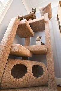l arbre 224 chat un terrain d aventures et de repos pour votre ami archzine fr