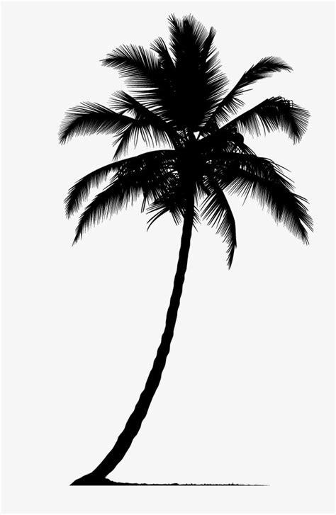 Palm Tree Silhouette, Tree Clipart, Palm Tree, Plant