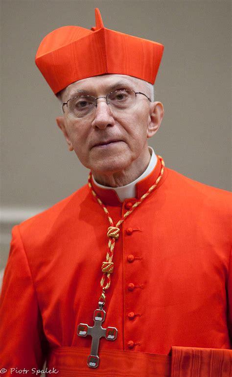 Santa Sede Nomine Vescovili by Telegrama Por La Muerte Cardenal Fortunato Baldelli