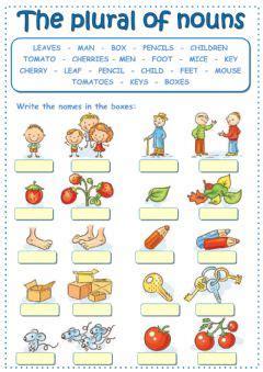 english exercises plural  exercise