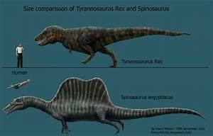 Image Gallery Spinosaurus Size