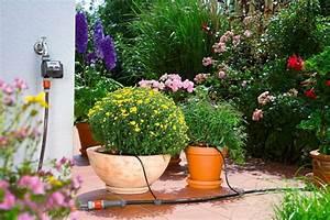 Gardena Bewässerungssystem Set : gardena start set micro drip system ~ Lizthompson.info Haus und Dekorationen
