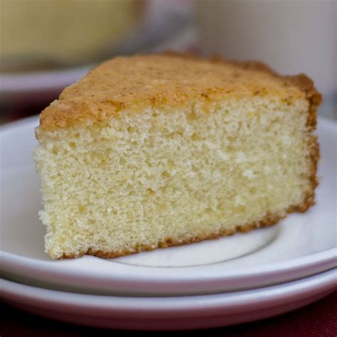 fluffy sponge cake recipe basic plain vanilla sponge cake milk cake moist and