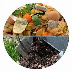 Ratten Im Kompost : komposthaufen anlegen standort finden ~ Lizthompson.info Haus und Dekorationen