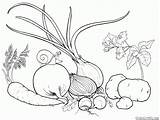 Coloring Vegetables Garden Pages Colorkid sketch template