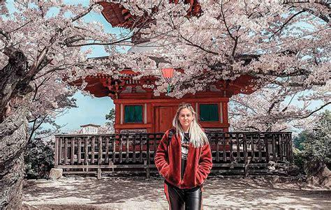 Tour To Japan Japan Unrivalled Tour Contiki