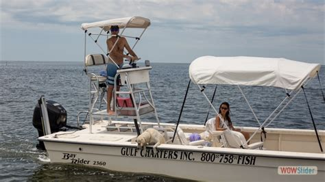 Boat Rental Homosassa Fl by Scalloping Tour Boat Rental Homosassa Fl Gulf Of Mexico