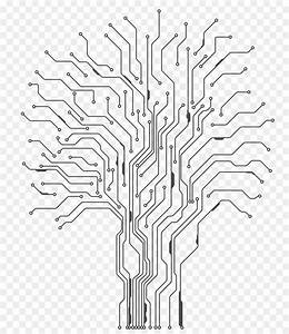Tree Drawing Png Download - 850 1038