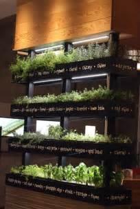 Indoor Vertical Herb Garden Kitchen