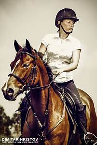 Girl Jockey On Purebred Brown Horse