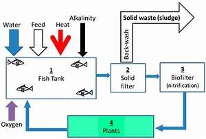 Aquaponics Water Flow Diagram