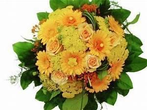 Bouquet De Fleurs Pas Cher Livraison Gratuite : fleurs livraison express ~ Teatrodelosmanantiales.com Idées de Décoration