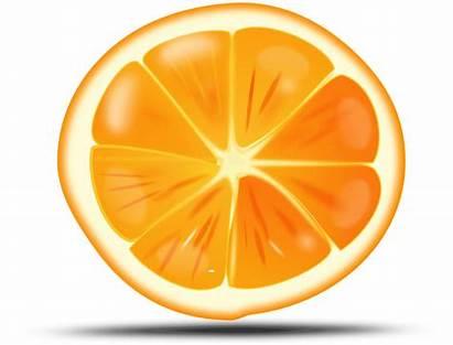 Fruit Orange Icon Naranja Cartoon Cliparts Clip