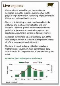 Cattle Exporters Commit To New Supply Chain Controls In