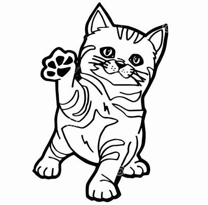Kucing Mewarnai Lucu Gambar Anak Kleurplaat Kat