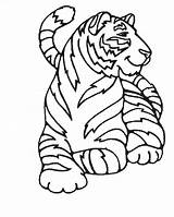 Coloring Tigers Pages Children Animals Printable Justcolor sketch template