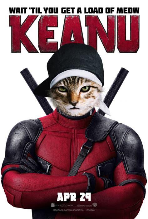 actress long of 2016 movie keanu keanu movie poster 13 of 13 imp awards