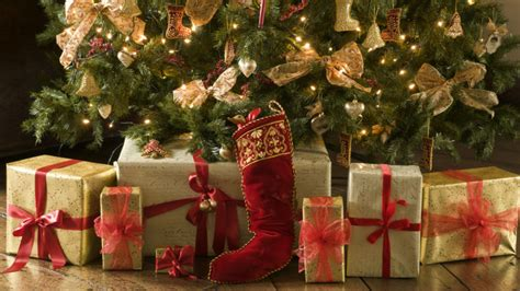 do real christmas trees have bugs your tree could be infested by 25 000 bugs