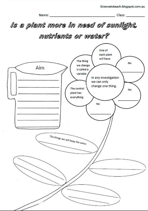 uses of plants grade evs science worksheets test papers on