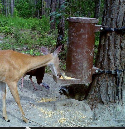 Gravity Deer Feeders by Gravity Deer Feeders Jeff