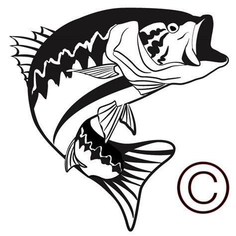 Bass Clipart Bass Fish Outline Clipartion