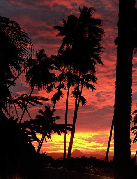 Savu Savu Sunset Photograph by Diane Bombshelter