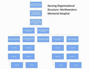 Organizational Flow Chart Template For Word 9 Hospital Organizational Chart Sampletemplatess