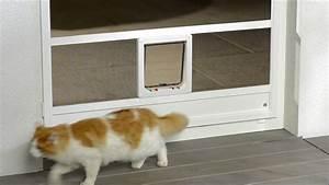 Luftzug Stopper Tür : katzenklappe in t r youtube ~ Michelbontemps.com Haus und Dekorationen