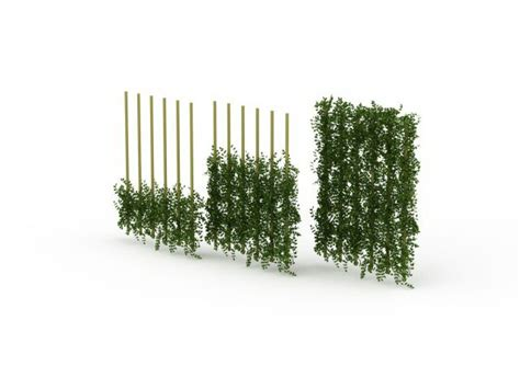 climbing vines for fences green wall fencing 3d model 3ds max files free
