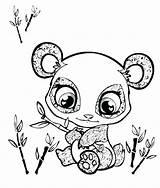 Panda Coloring Pages Printable Getdrawings Getcolorings sketch template