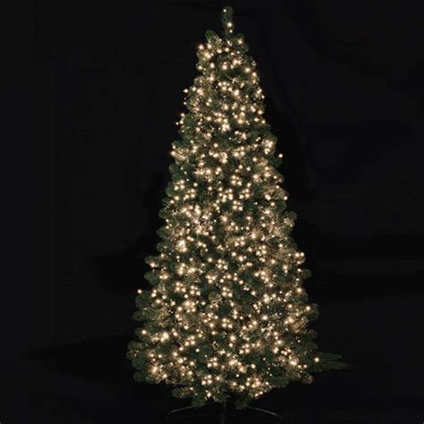 750 treebrights multi action christmas tree lights warm white festoon lighting