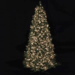 750 Treebrights Multi Action Christmas Tree Lights (Warm