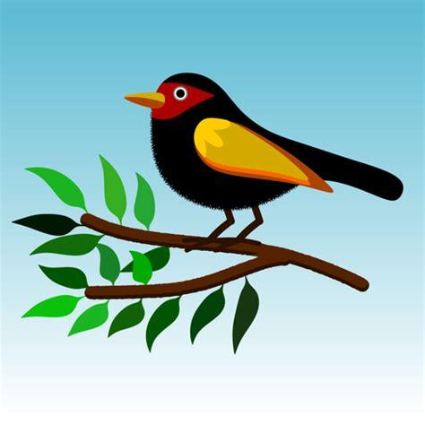 burung warna warni pohon domain publik vektor