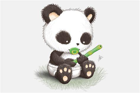 baby panda photo drawing drawing skill