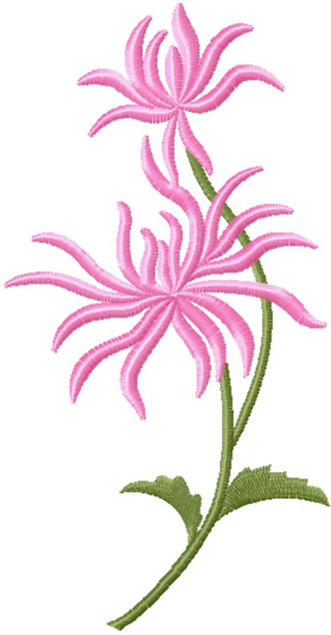 free embroidery designs chrysanthemum free machine embroidery design