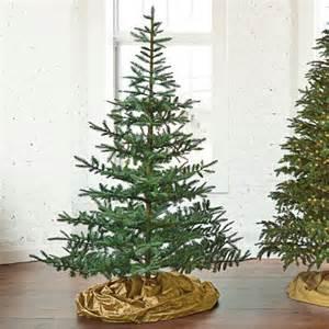 Silver Tip Christmas Tree Farm Apple Hill by Fresh Cut Noblis Fir Artificial Christmas Tree 7