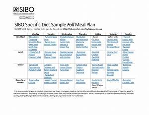 Sibo Specific Diet Meal Plan