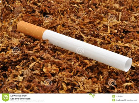 Cigarette Tobacco Bing Images