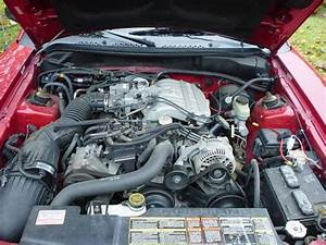 Rfair07 1996 Ford Mustang Specs  Photos  Modification Info At Cardomain