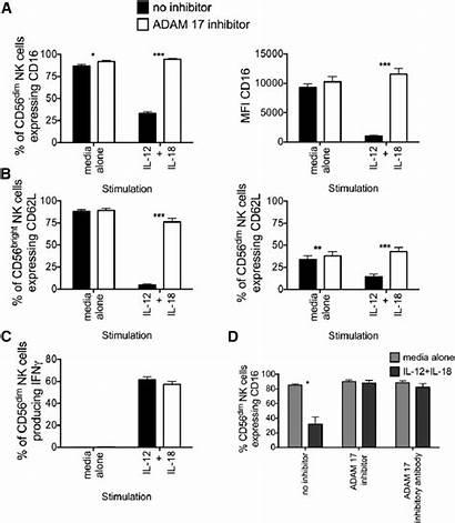 Shedding Cytokine Induced Adam17 Inhibition Cd62l Reduces
